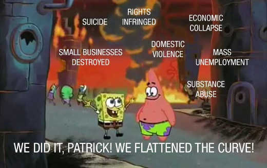we did it patrick flattened curve economic collapse domestic violence suicide businesses destroyed