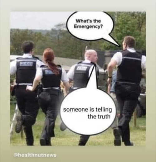 whats emergency someone is telling the truth police