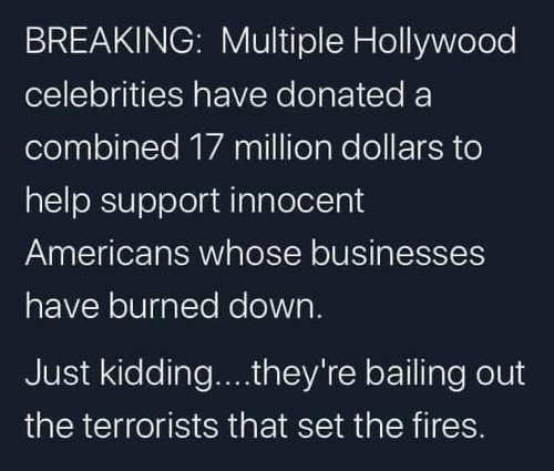 breaking multiple hollywood celebrities donating money support innocent americans just kidding bailing out terrorists