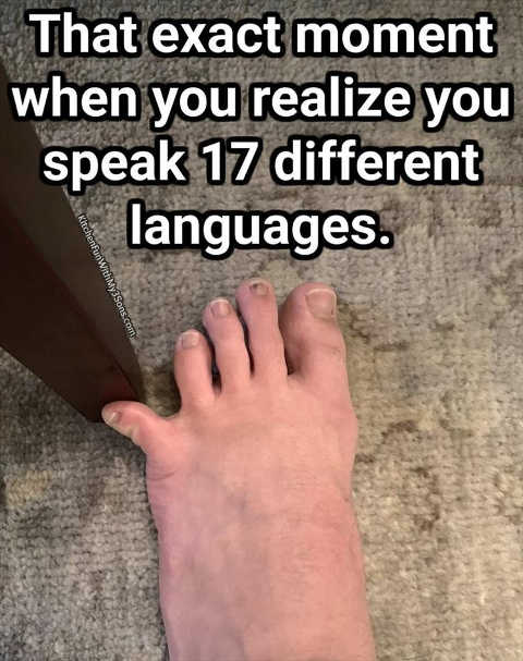 stub toe exact moment realize speak 17 different languages