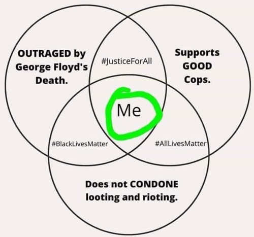 venn diagram outraged by george floyd supports good cops no rioting looting