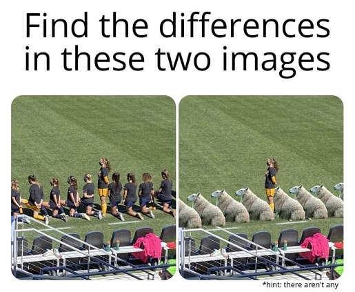 find difference two images us womens soccer team sheep kneeling for national anthem