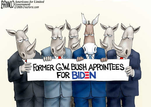 former gw bush appointees for biden rinos republicans in name only