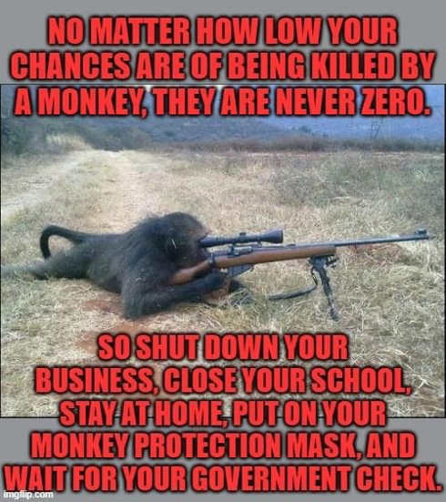 no matter how low chances being killed by monkey never zero close business wear monkey protection mask