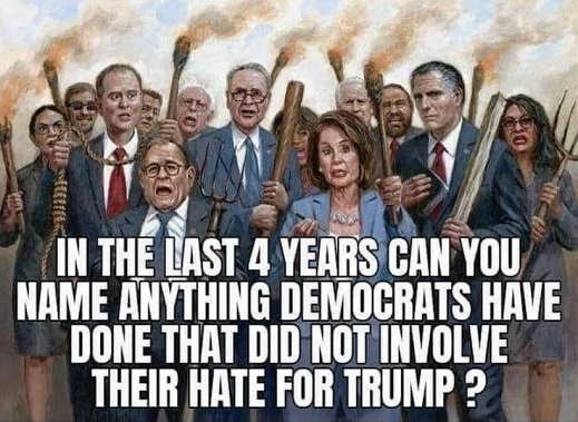 question in last 4 years can you name anything democrats did didnt involve hatred of trump pelosi schumer nadler omar aoc waters