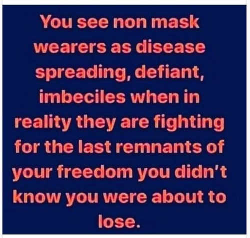 you see non mask wearers as disease spreading defiant imbeciles reality fighting for last remnants of freedom