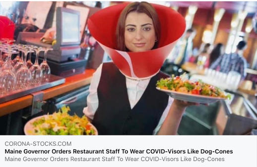 maine governor orders restaurant staff to wear covid dog cones