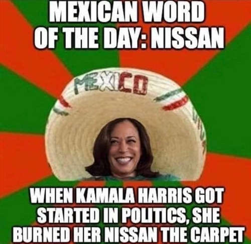 mexican word of day when kamala harris started politics burned knees on carpet
