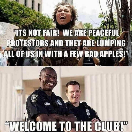 not fair we are peaceful protesters lumping us with few bad apples welcome to the club