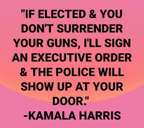 quote kamala harris if elected you dont surrender guns executive order police will show up at your door
