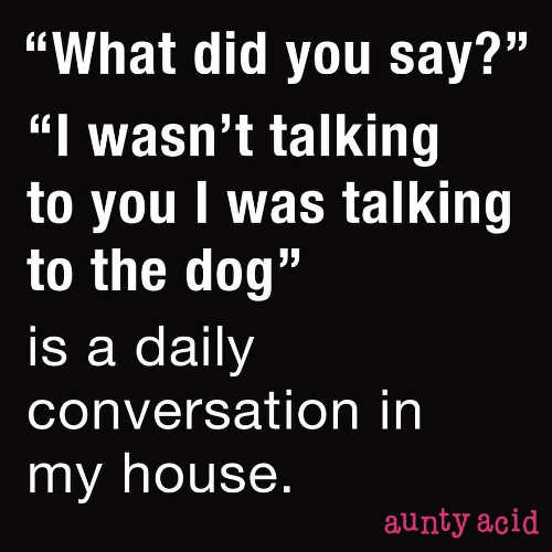 quote what i was talking to the dog daily conversation in my house