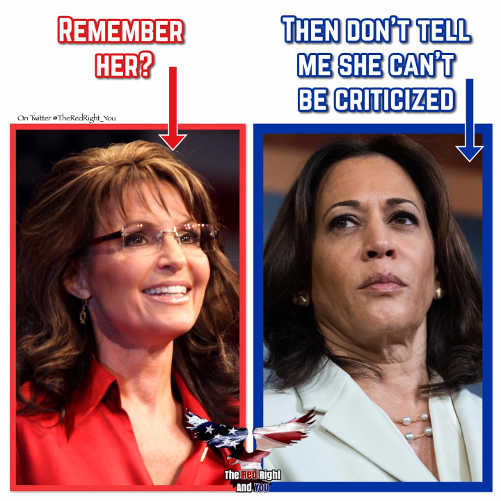 remember sarah palin then dont tell me kamala harris cant be criticized as woman
