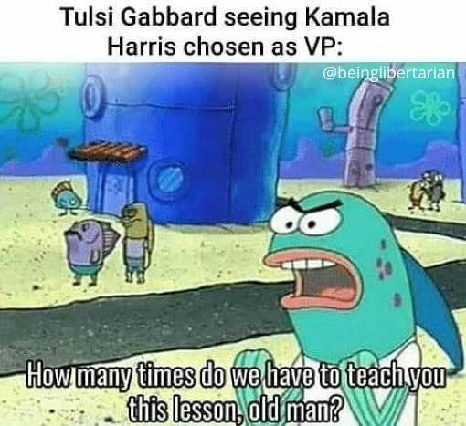tulsi gabbard seeing kamala harris vp choice how many times teach biden this lesson old man sponge bob