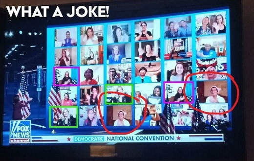 what a joke democrat national convention zoom call duplicate callers