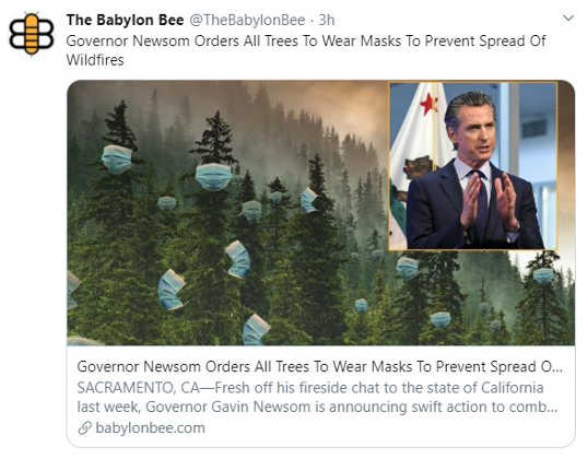 babylon bee newsom mask mandate on trees to stop wildfires