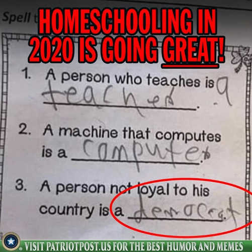 homeschooling in 2020 is going great person not loyal to country is a democrat