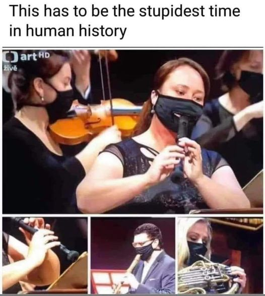 message has to be stupidest time in human history masks instruments