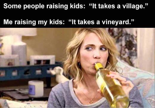 some people raising kids it takes a village me takes a vineyard wine