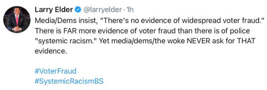 tweet larry elder systematic racism voter fraud media bias