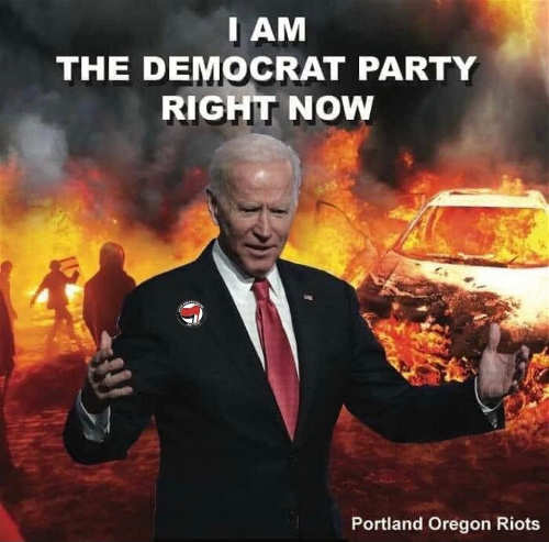Quote joe biden i am democratic party riots