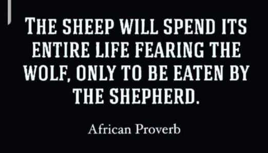 quote sheep will spend life fearing wolf only to be eaten by shepard african proverb