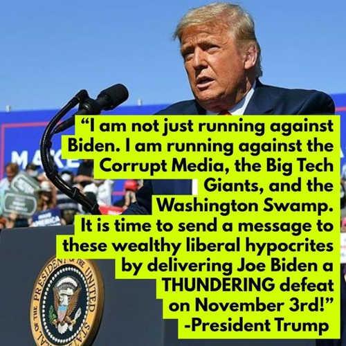quote trump not just against biden big tech dc swamp corrupt media liberal hypocrites