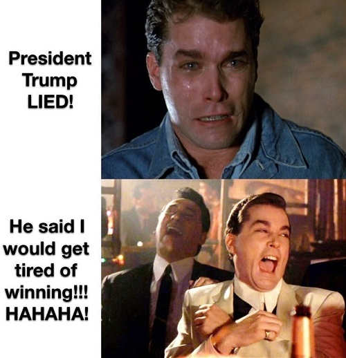 trump lied he said i would get tired of winning ray liotta