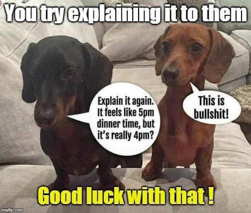 dogs you try explaining daylight savings dinner time