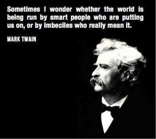 quote mark twain sometimes wonder whether world is run by smart people putting us on or imbeciles really mean it