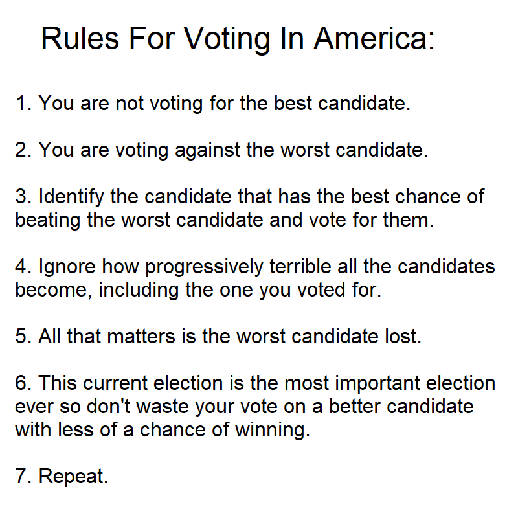 rules for voting in america not voting for best candidate against worst repeat