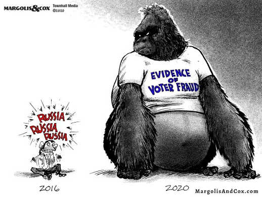russia russian moukey gong gorilla 2020 evidence voter fraud