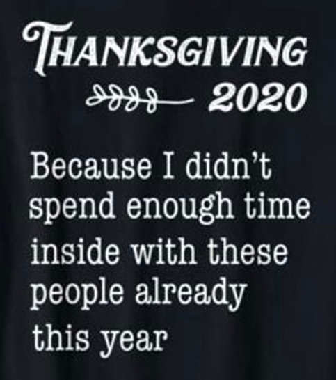 thanksgiving 2020 because i didnt spend enough time with these people inside already this year