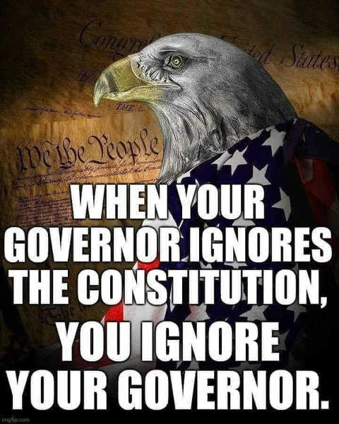 message when governor ignores constitution ignore your governor
