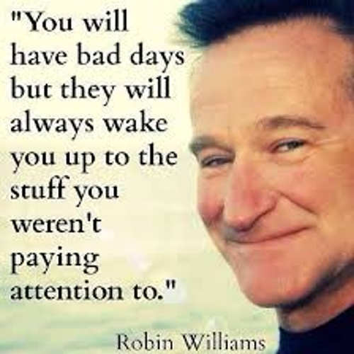 quote robin williams you will have bad days wake you up to what werent paying attention to