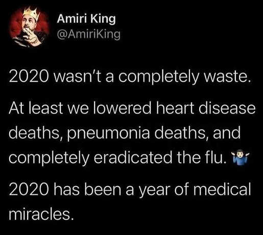 tweet amiri king 2020 wasnt total loss lowered deaths pneumonia heart disease eradicated flu medical miracles