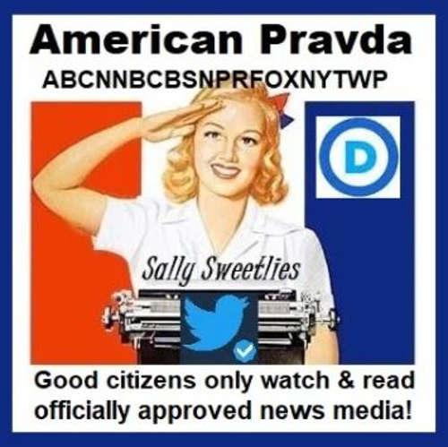 american pravda good citizens only watch approved news media cnn cbs abc fox nyt washington post democrats