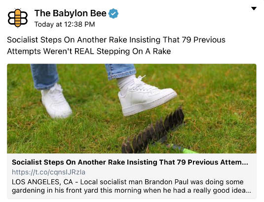 babylon bee steps on another rake not real socialism