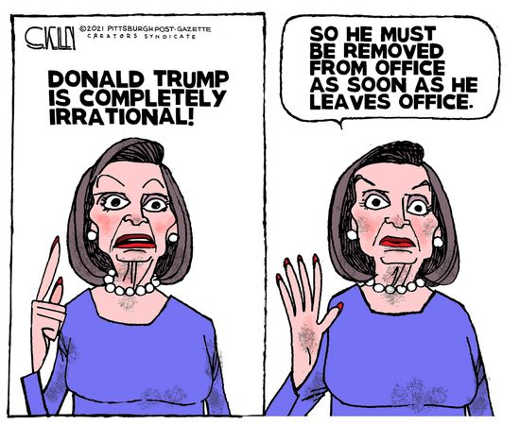 pelosi trump is irrational so must be removed as soon as leaves office
