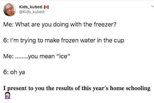 tweet kid kubed ice freezer home schooling