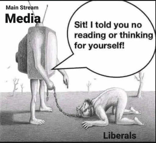 mainstream media liberals bowing no reading or thinking for yourself
