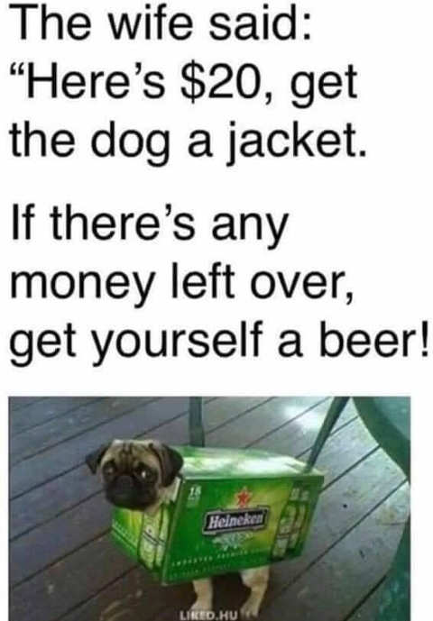 pug heinkein jacket 20 dollars wife