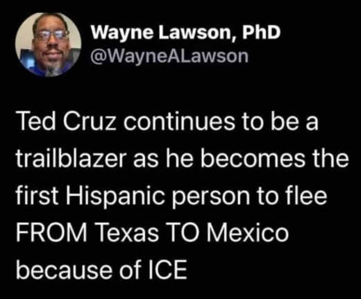 tweet wayne lawson ted cruz texas mexico because of ice