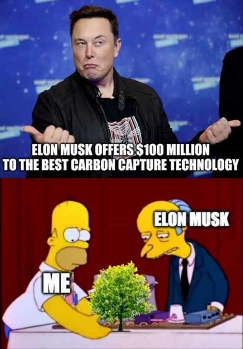 elon musk best carbon capture homer simpson tree