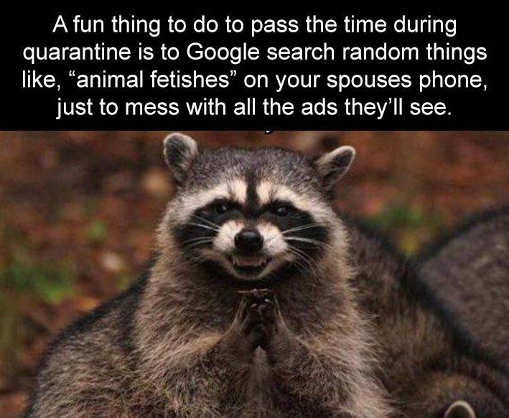 fun thing to do google search random animal fetishes spouse ads