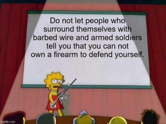 message lisa simpson dont let people surrounded by barbed wire soldiers cant own firearm