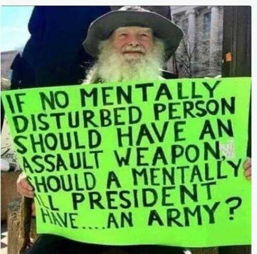 quote if no mentally disturbed assault weapon ill president have army