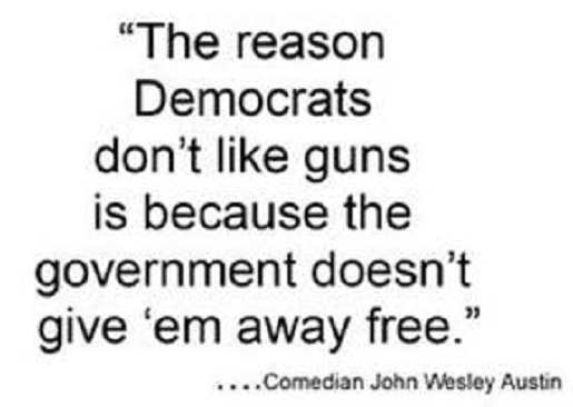 quote reason democrats dont like guns government not free wesley austin