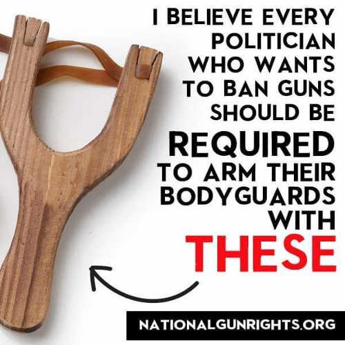 believe every politician ban guns required to arm bodyguards sling shot