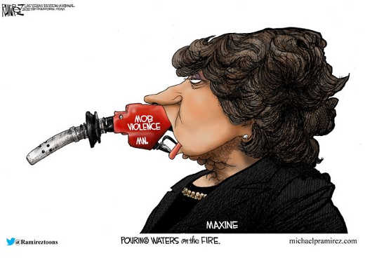 maxine waters throwing gasoline on mob violence