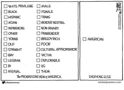 progressive view of america deplorable trans privilege